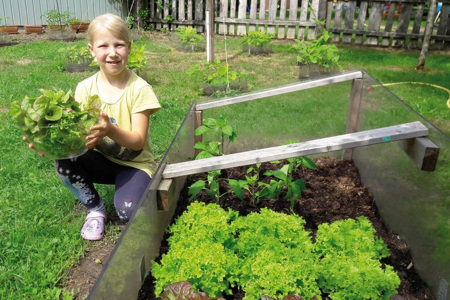 Mädchen mit Salat am Beet